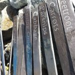 Engraved Welsh Slate Plant Markers